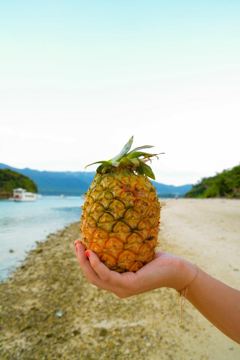 Ananas à Kabira Bay, Ishigaki.